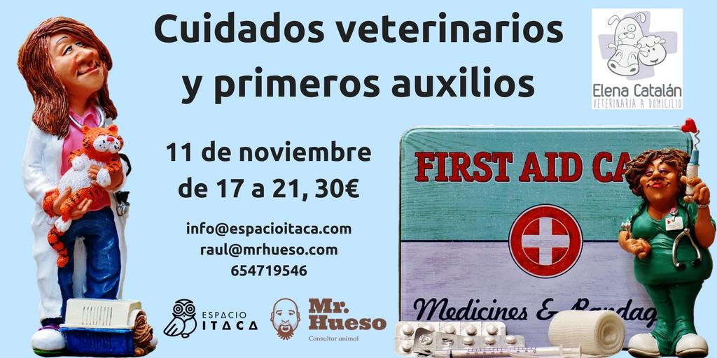 cartel en el que salen unos divertidos dibujos de veterinarias