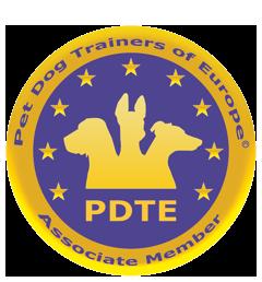 logo de la PDTE