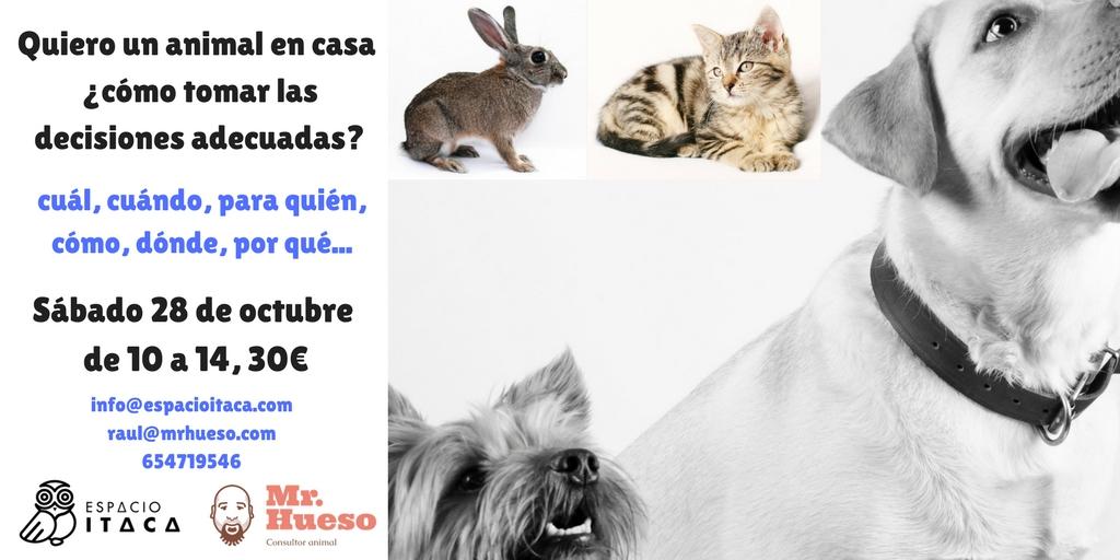 cartel en el que salen distintos animales habituales en los domicilios