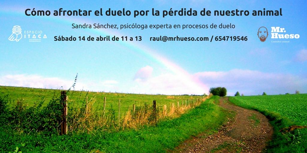 sale un paisaje verde con un arcoiris en el cielo