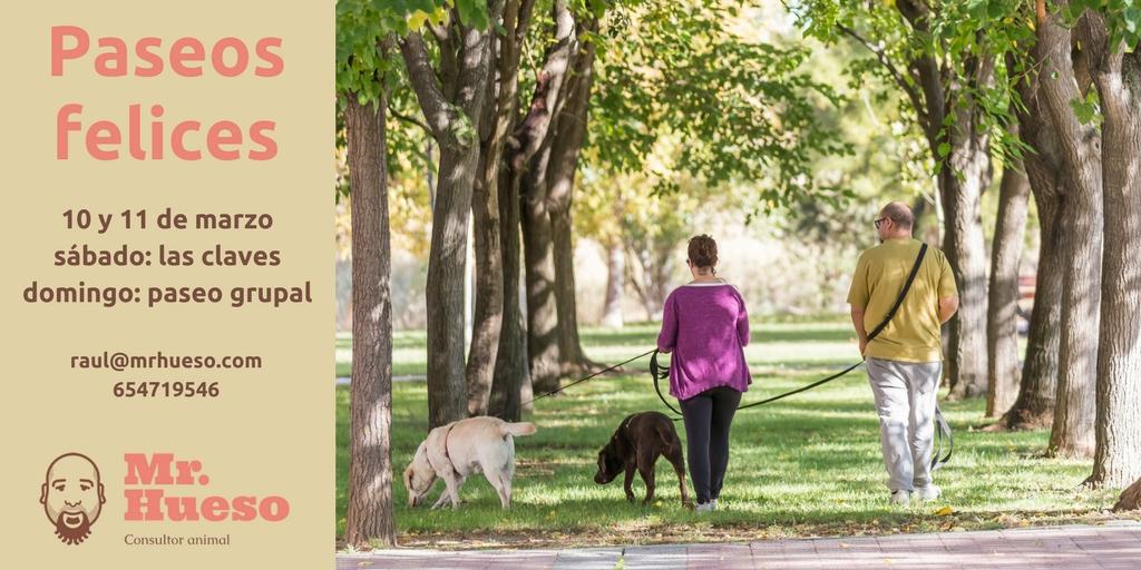 dos personas paseando junto a sus perros entre árboles