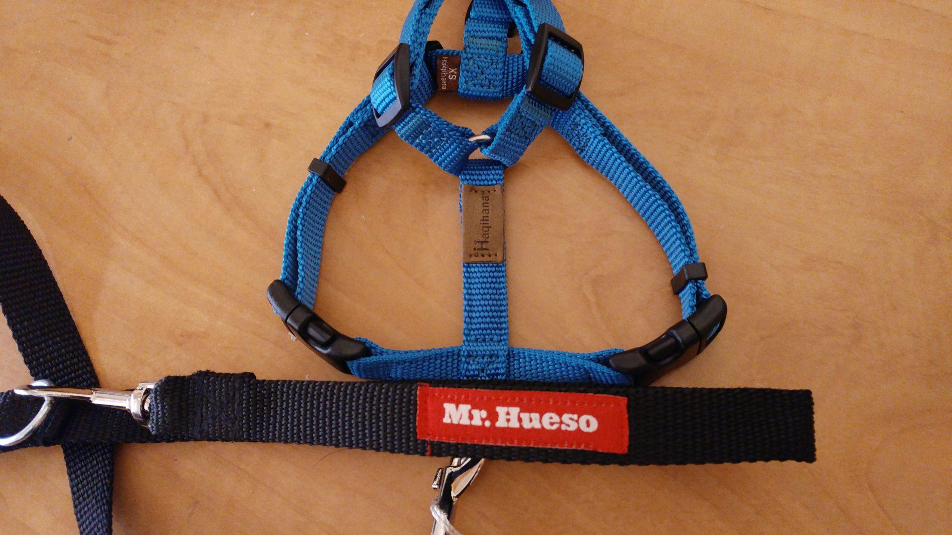 arnés Haqihana y correa Mr. Hueso para perros pequeños o medianos