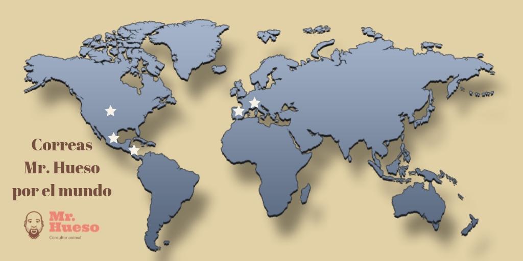 Mapa del mundo con los países donde hay alguna correa Mr. Hueso señalados
