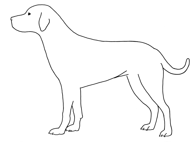 silueta de un perro