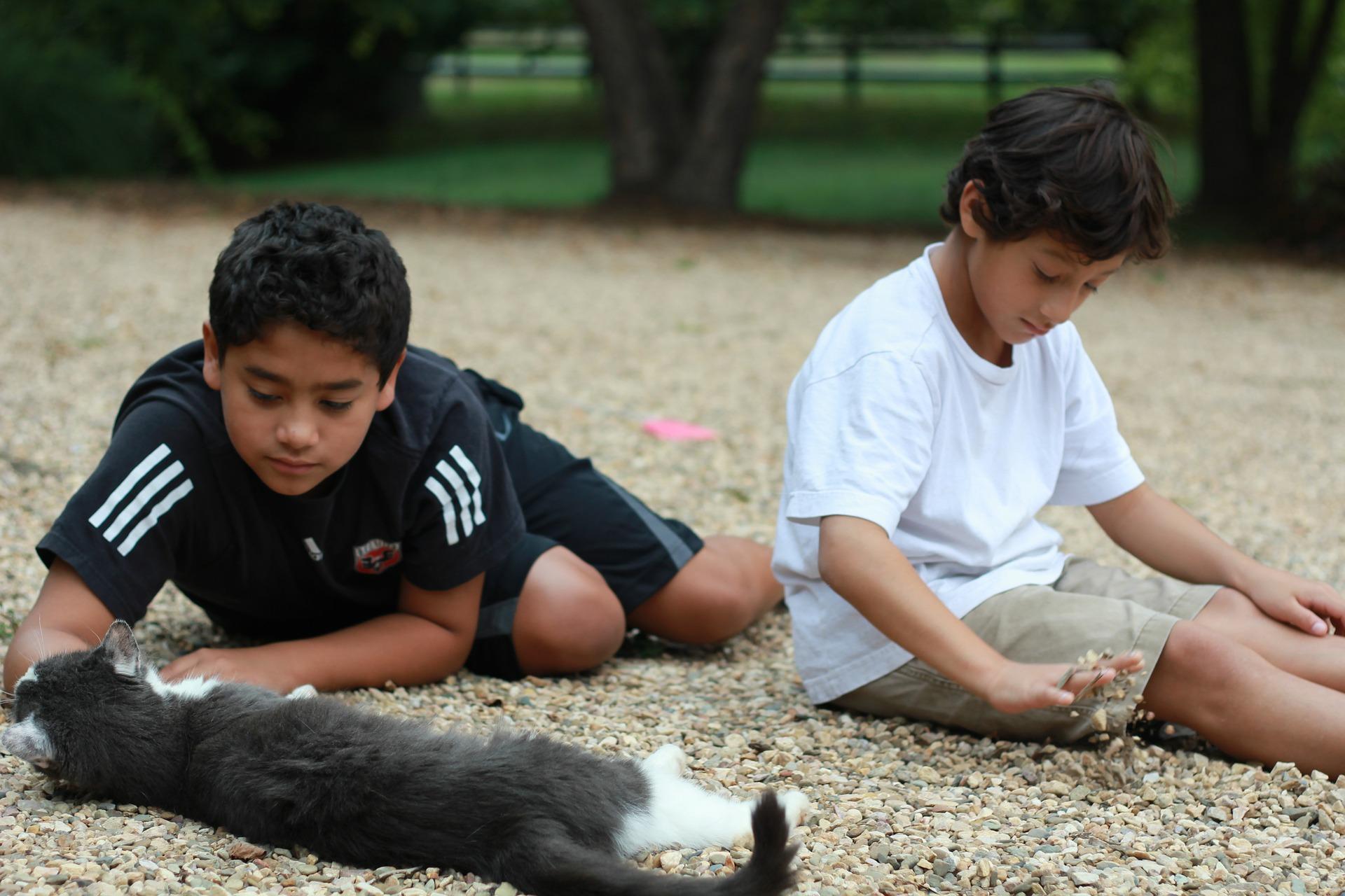 dos niños jugando con un gato