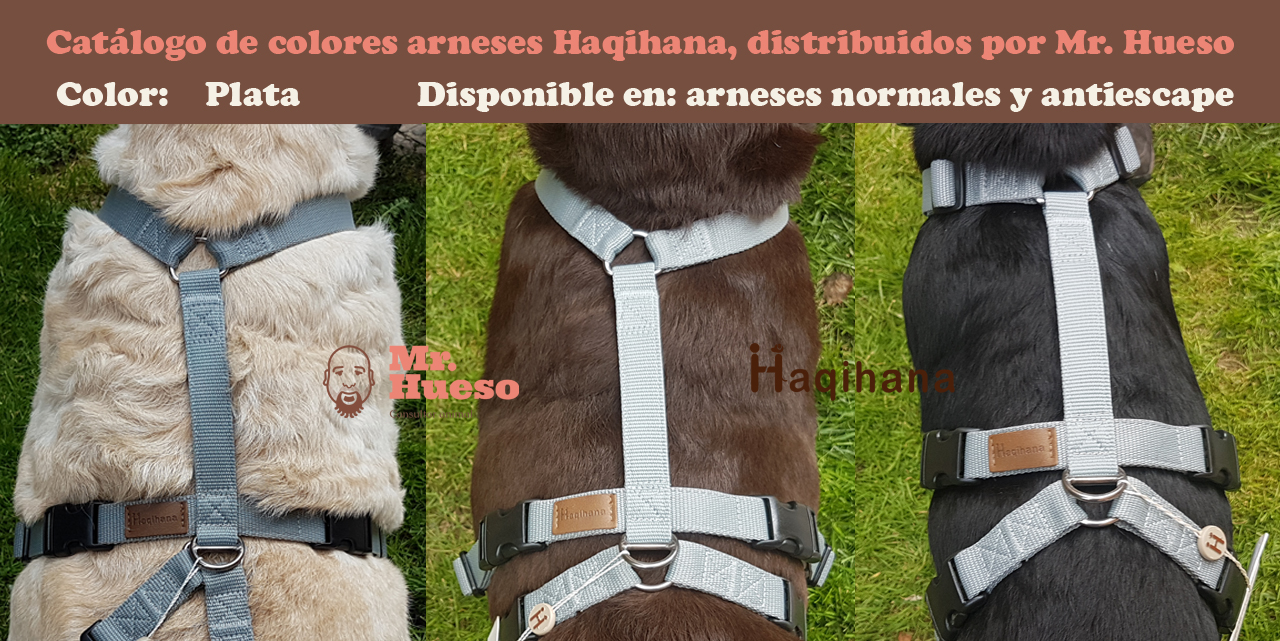 Color plata catálogo Haqihana