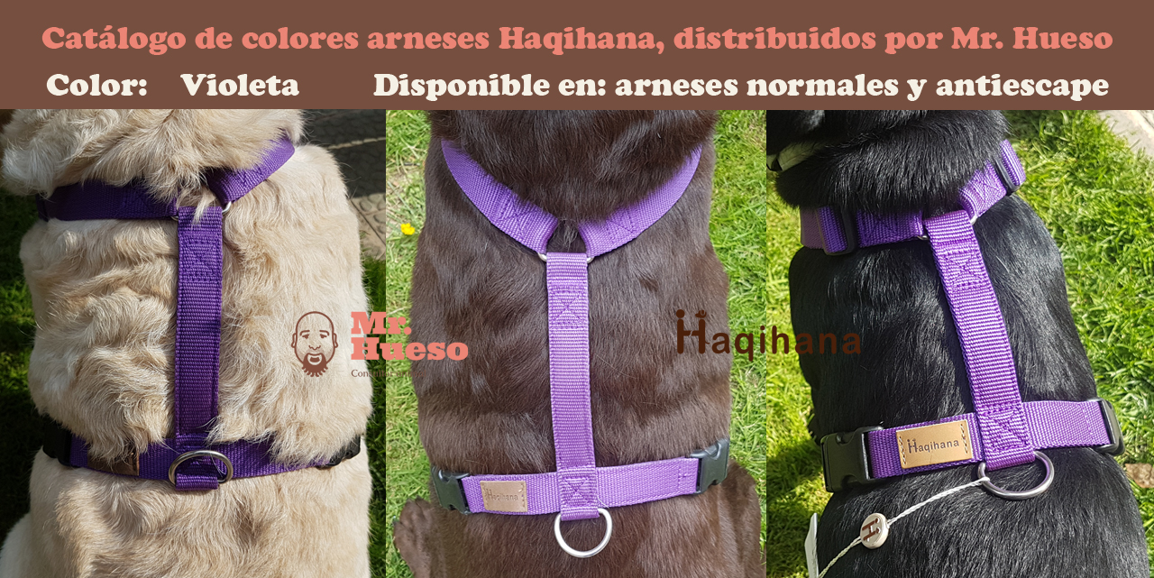 Color violeta catálogo Haqihana