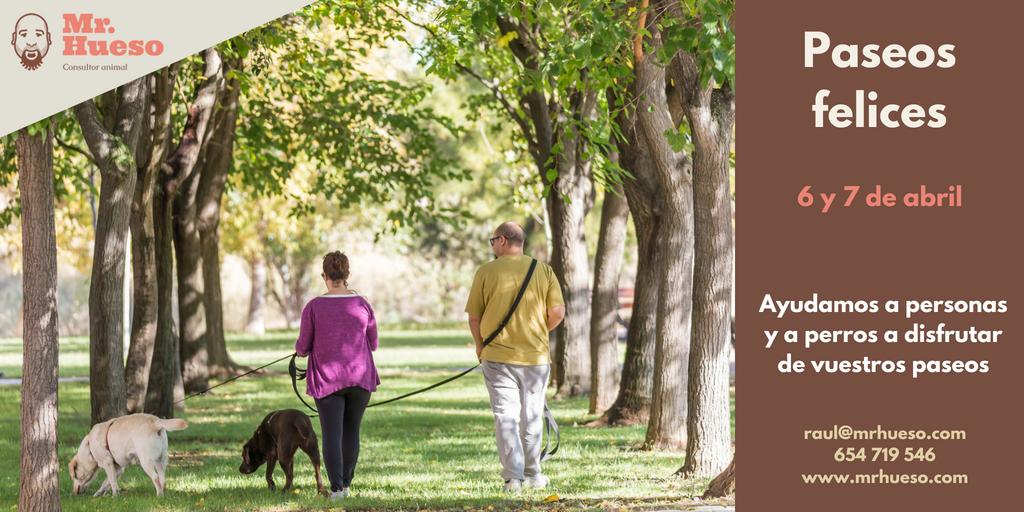 dos personas paseando junto a dos perros