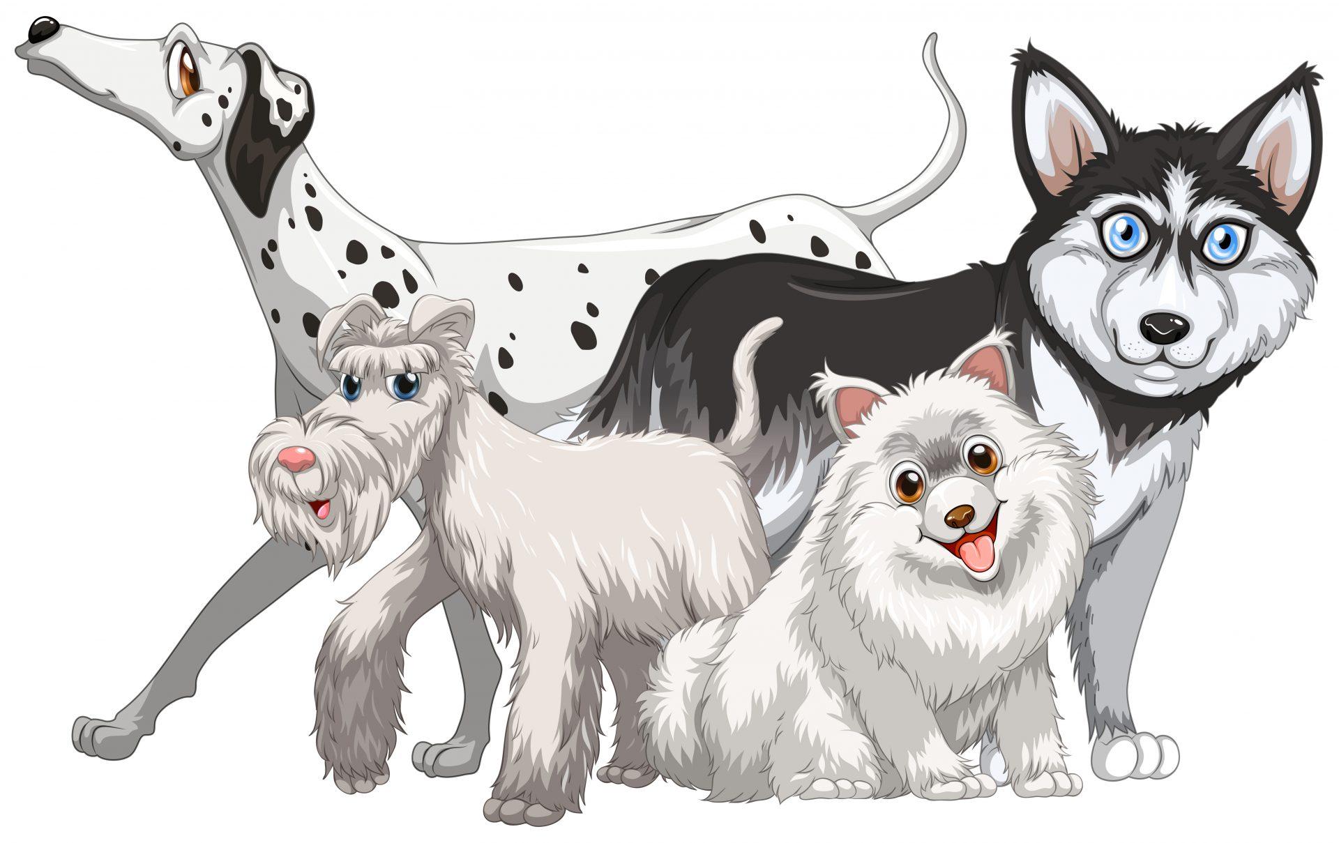 Dibujo con varios tipos de perros distintos