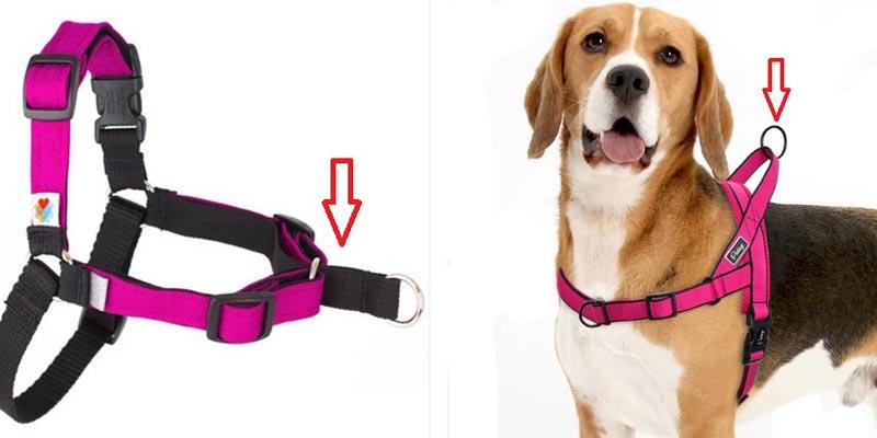 arneses con hebillas o tiras móviles, que durante el paseo se están continuamente moviendo y variando el equilibrio del perro