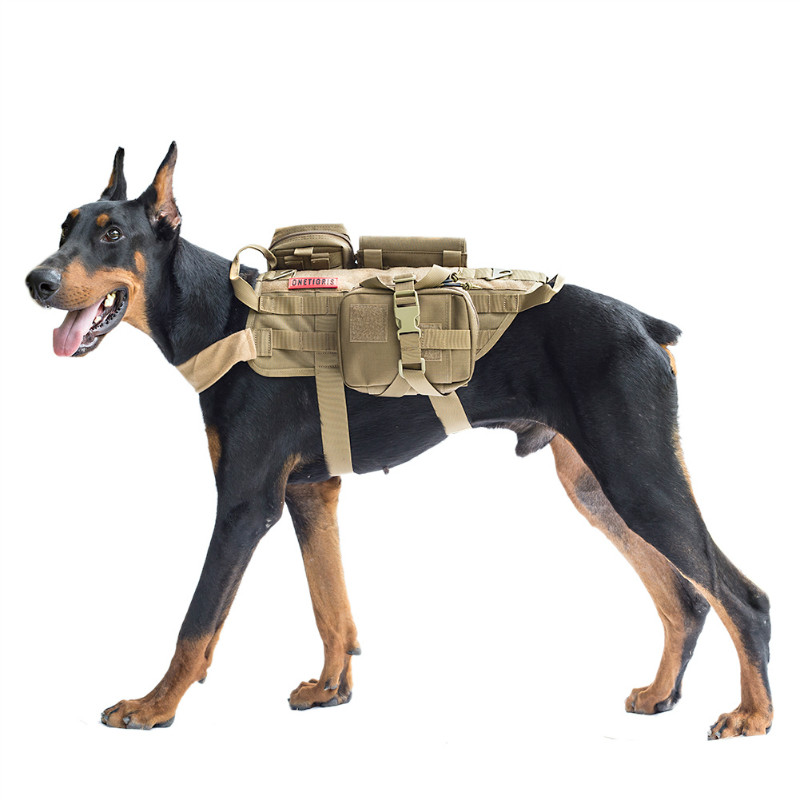 perro con arnés militar