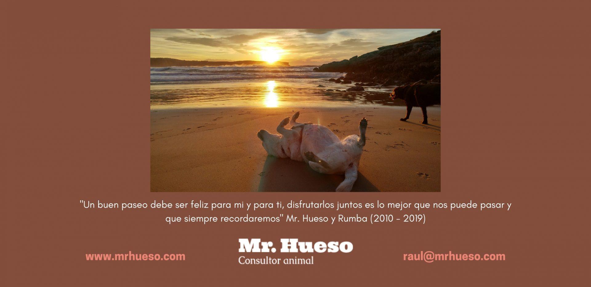 Contraportada con una preciosa foto de Rumba y Salsa en un amanecer en la Playa de los Locos, en Suances, Cantabria
