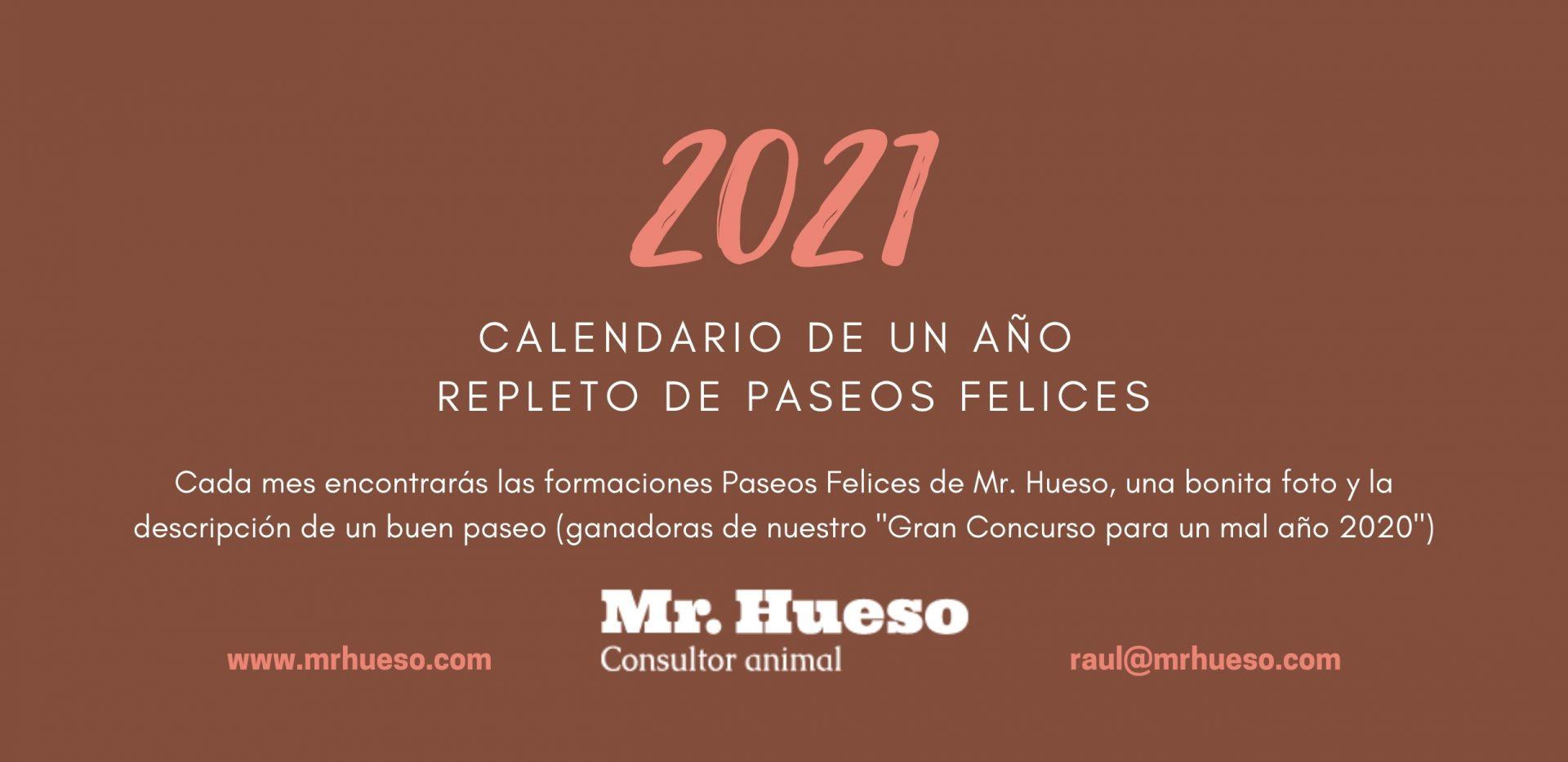 Portada Calendario Mr. Hueso 2021, dice 2021 calendario de un año repleto de paseos felices